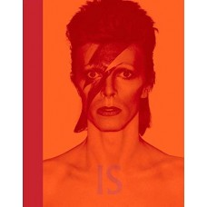 DAVID BOWIE-DAVID BOWIE IS (LIVRO)