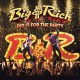 BIG & RICH-DID IT FOR THE PARTY (CD)