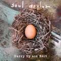 SOUL ASYLUM-HURRY UP AND WAIT (CD)
