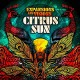 CITRUS SUN-EXPANSIONS AND VISIONS (CD)