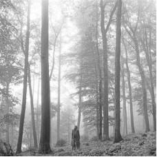 TAYLOR SWIFT-FOLKLORE (CD)