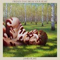 JAMES BLAKE-FRIENDS THAT BREAK YOUR HEART (CD)